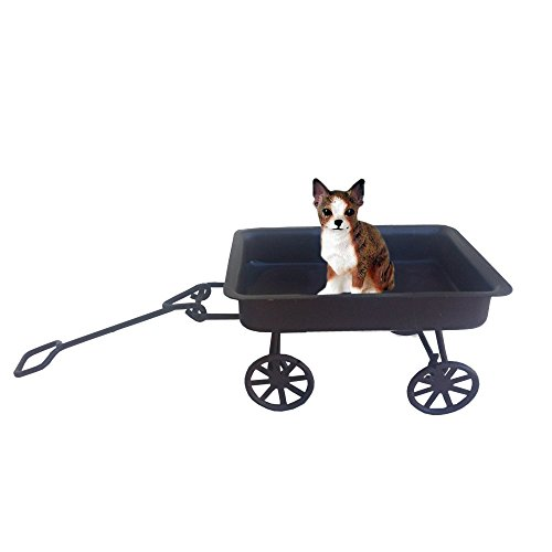 (Brindle and White Chihuahua on a Wagon Ride)