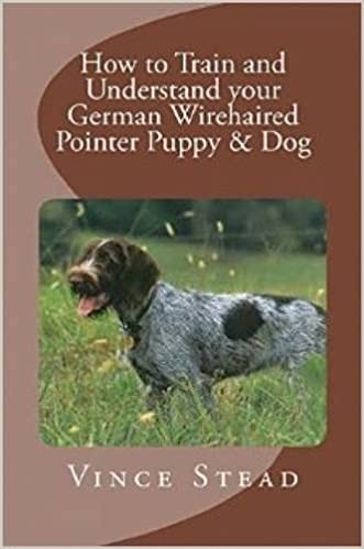 How To Train And Understand Your German Wirehaired Pointer Puppy