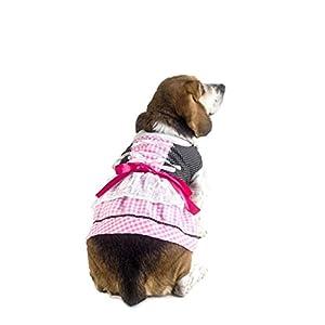 21cd909ec Short Descriptions for the Above Products  Anit Accessories Lederhosen Dog  Costume ...