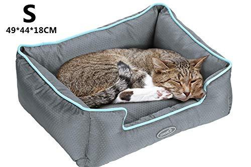 🥇 Productos para mascotas con pelín rígida cama