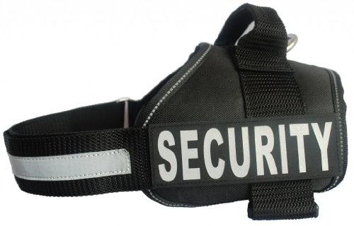 SECURITY Harness Removable Purchase reflective