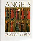 img - for Angels : An Endangered Species book / textbook / text book