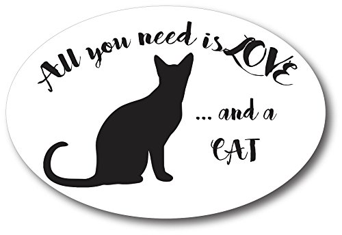 All You Need is Love.and a Cat 4x6 Oval Car Magnet Decal Heavy Duty Waterproof ()