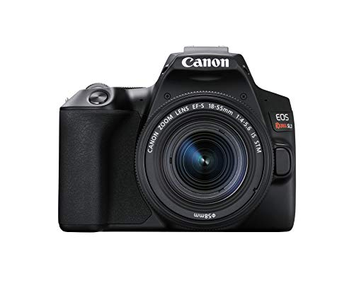 Canon Rebel SL3 with 18-55mm Lens Black (Best Wifi Dslr Camera 2019)