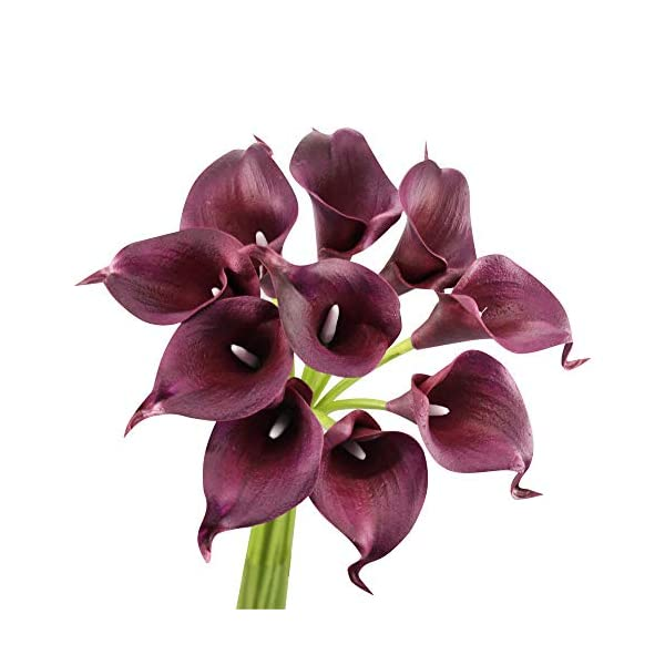 Angel Isabella, LLC 20pc Set of Keepsake Artificial Real Touch Calla Lily with Small Bloom Perfect for Making Bouquet, Boutonniere,Corsage (Wine(Burgundy))