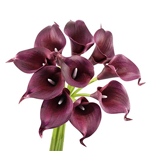 Angel Isabella 10pc Set Real Touch Calla Lily-Premium Fragrance Keepsake Artificial Flower Perfect for Cut to Make Boutonniere Corsage Bouquets (Wine(Burgundy))