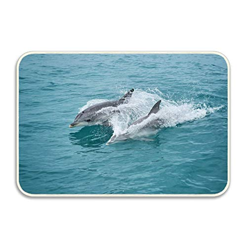 FnLiu 18 by 30 Printed Entrance Rug Bottlenose Dolphin, for sale  Delivered anywhere in Canada