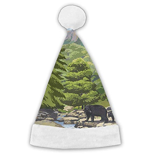 (LFPJSH Leconte Creek and Mt. Leconte - Great Smoky Mountains National Park Santa Hat for Child and Adult)