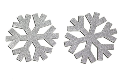 CoolHubcaps Glittering Snow Flake Magnets