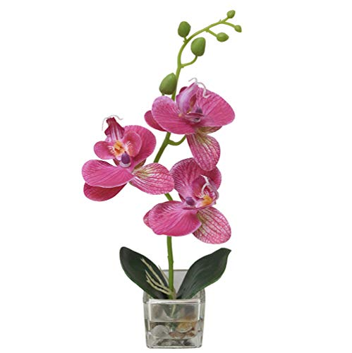GXLMII Artificial Flowers Lifelike Real Touch Arrangement Phalaenopsis Bonsai Orchid Miniascape Home Decoration