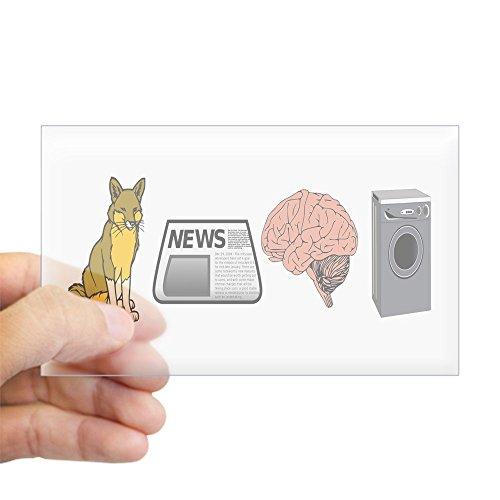 CafePress - FOX NEWS Sticker (Rectangle) - Rectangle Bumper Sticker Car - Palin Stickers Bumper Sarah