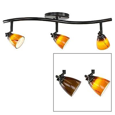 Direct-Lighting 3 Lights Adjustable Track Lighting Kit. Colored Glass Shade. Light Bulb Included.