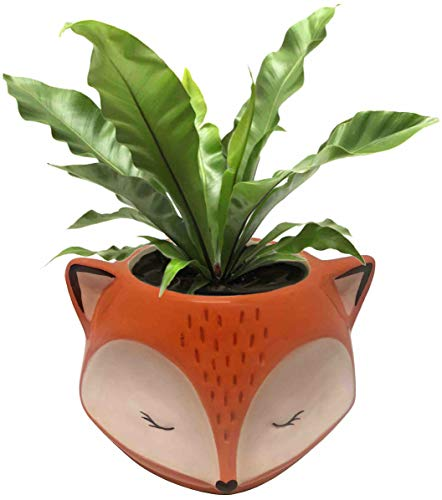 - Streamline Ceramic Fox Flower Planter Pot