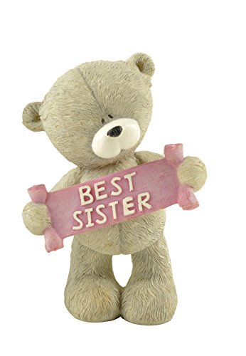 (ENNAS Hand Painted Resin Teddy Bear Best Birthday Gifts for Sister Gray 2.76