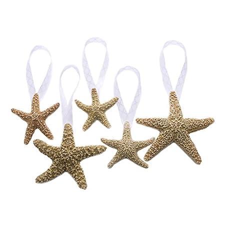 41CUQLImLnL._SS450_ Starfish Christmas Ornaments