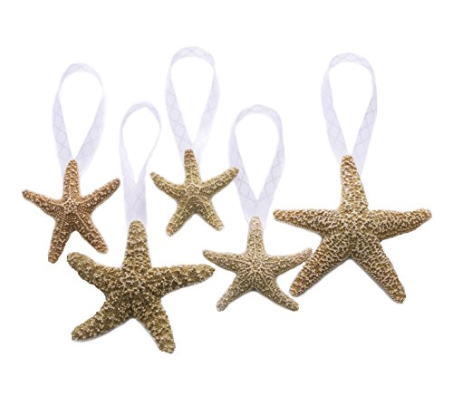 41CUQLImLnL Amazing Starfish Christmas Ornaments