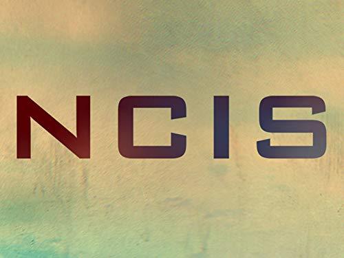 Plot Or Not?' Round 1: NCIS Stars Test Their Show Knowledge (Ncis Wickersham)