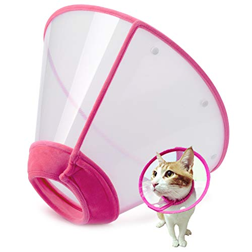 - IN HAND Adjustable Recovery Dog Cone Cat Cone, Clear Padded ECollar with Breathable Soft Edge Plastic Soft Cone,Designed for Cats and Puppies