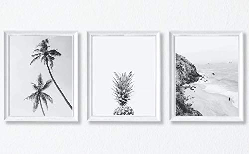 Pineapple Art, Palm Tree Art, Black and White Photography Coastal Home Wall Art Decor Poster, Set of 3, 11x14 Inches (Unframed)