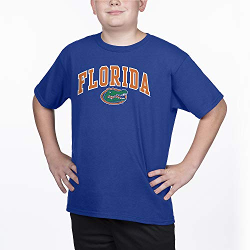 Top of the World Florida Gators Youth Short Sleeve Arch Tee, Royal, Medium (Florida Gator Youth Jersey)