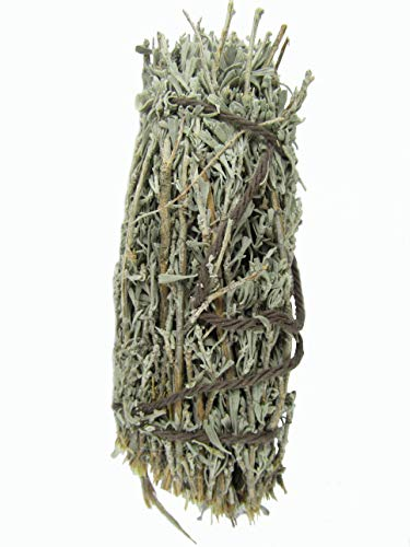 (1 Pinion Pine and Sage 5