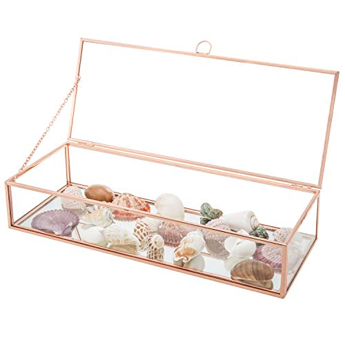 MyGift Rose Gold Metal & Glass Mirrored Jewelry Display Box with Hinged Top Lid (Jewelry Glass Display Box)