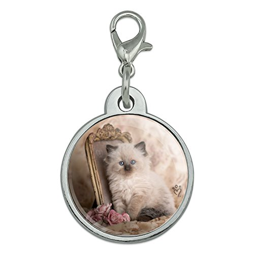 (Graphics and More Ragdoll Tiffany Cat Kitten Victorian Roses Chrome Plated Metal Pet Dog Cat ID Tag - Small)