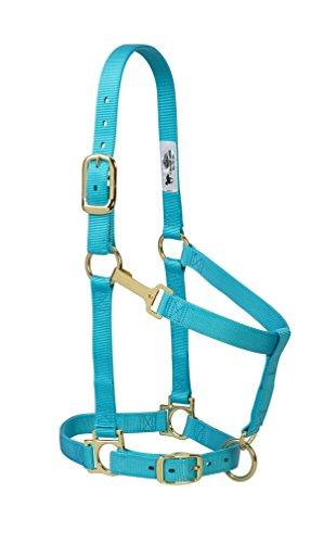 - Weaver Leather Basic Adjustable Nylon Halter, Turquoise, 1