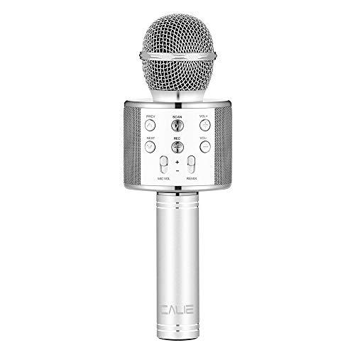 Best Speaker Bluetooth Karaoke Phone List Pokrace Com