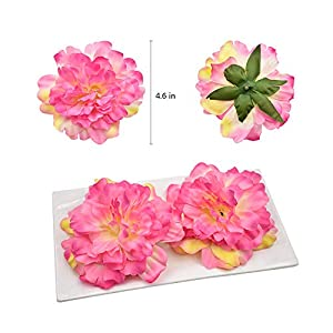 HZOnline Artificial Silk Peony Flower Heads, Fake Stemless Head Floral Bouquet for Crafts Wedding Wrist Flower Decoration DIY Making Beach Shoes Hair Clips Headbands Photography Props (10pcs Pink) 2