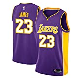 Zhao Xuan Trade Los Angeles Lakers LeBron James Men's Basketball Jersey Stitched Breathable #23 Sport Swingman Jersey Cloths