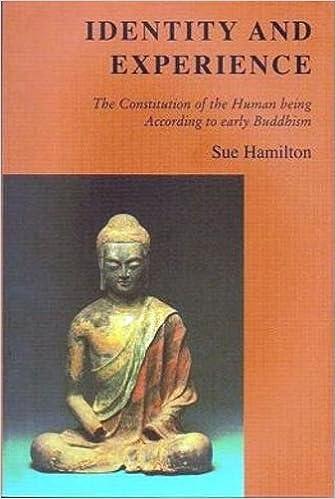 Hamilton Identity and Experience cover art