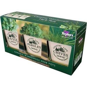 Taylors Ceramic Windowsill Herb Kit Beige Amazoncouk Garden