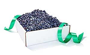 5 Pounds of Wild Organic Blueberries from Josh Pond
