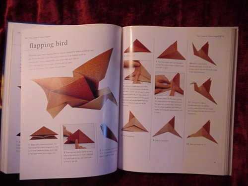 Practical origami: A step-by-step guide to the ancient art of paperfolding