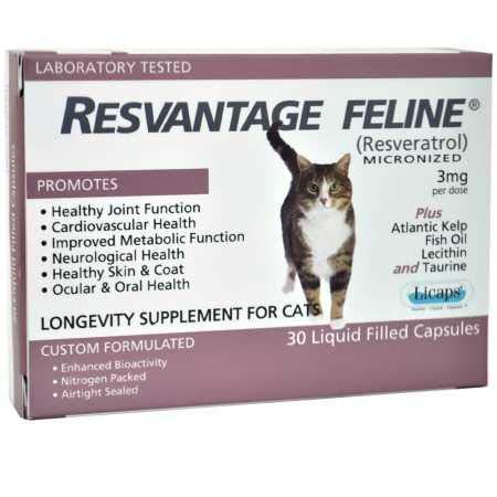 Amazon.com: resvantage Feline – Resveratrol – La Longevidad ...