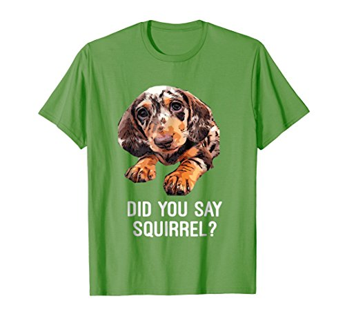 Mens Dapple Dachshund, Did you say Squirrel Funny Shirt 2XL Grass -