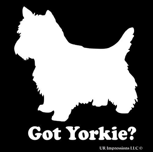 Got Yorkie Decal Vinyl Sticker|Cars Trucks Walls Laptop|WHITE|5.5 In|URI051 (Got Yorkie)
