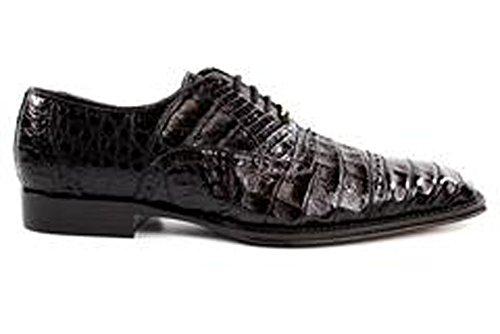 Belvedere Marcello Genuine Crocodile Oxford Shoe 8 Brown ()