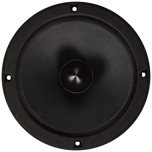 Faital Pro 10PR310 10-Inch 8ohm 600 Watts 98dB 2.5VC Mid-Bass Guitar Speaker, Single ()
