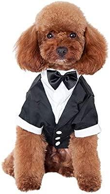 Gusspower Caballero Ropa para Mascotas,Traje de Perro con ...