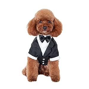Gusspower Caballero Ropa para Mascotas,Traje de Perro con Boda de ...