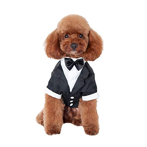 Barlingrock 2019 Black Dog Shirt Puppy Pet Small Dog Clothes, Stylish Suit Bow Tie Costume, Wedding Shirt Formal Tuxedo with Black Tie, Dog Prince Wedding Bow Tie Suit