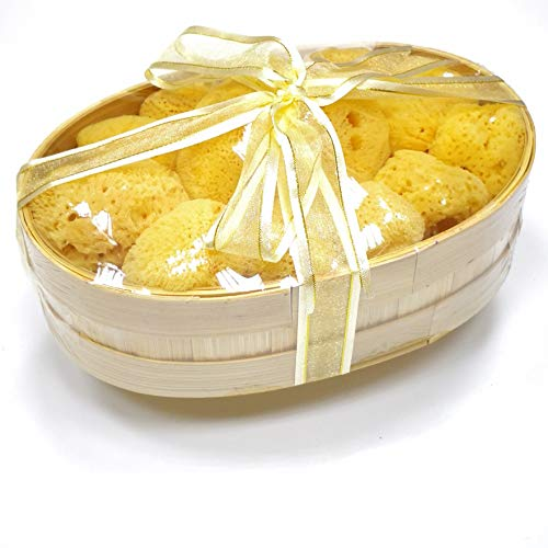 Natural Sea Sponge for Face Cleaning 2