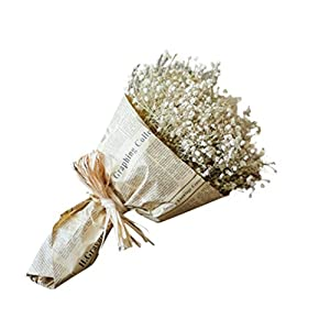 Kintaz Natural Dried Gypsophila Flower Bouquet Decorative Baby's Breath Bunch Dried Blooms Home Decor Best Gift (White) 55