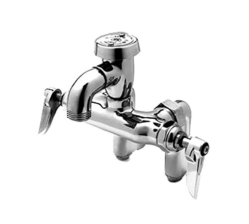 T&S Brass B-0669-POL Service Sink Faucet, Wall Mount, Adjustable Center, Vacuum Breaker, Integral Stop, Polished by T&S Brass