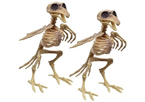 Plastic Bird Skeleton- Set of 2 - Halloween Decoration -