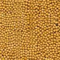 Mustard Seed Yellow Powder - Sinapis alba (454g = One Pound) Brand: Herbies Herbs