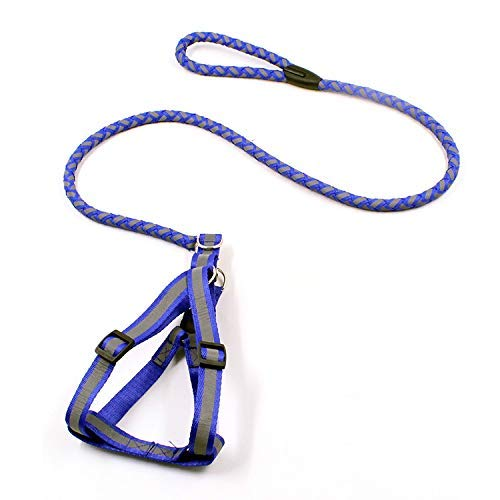 bluee HSDDA Dog Outdoor Leash Pet leash rope reflective round rope outdoor hyena rope,green Walking Leash (color   bluee)