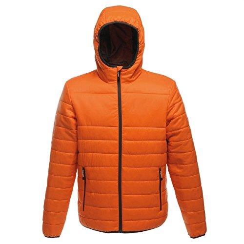 Arancione Giù Maschile Giacca Regata Manica Lunga Warmloft Acadia Tocco 8PUq17wPx